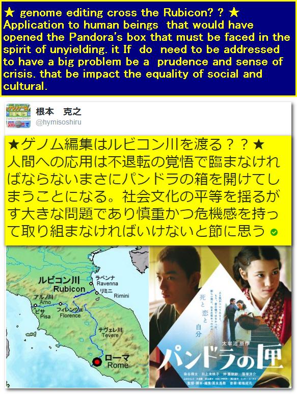ゲノム編集英語と日本語セット版